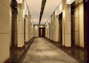 地毯MJD010